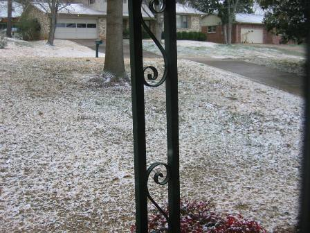 snow2008.jpg